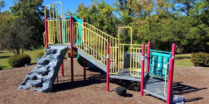 Forest_playground