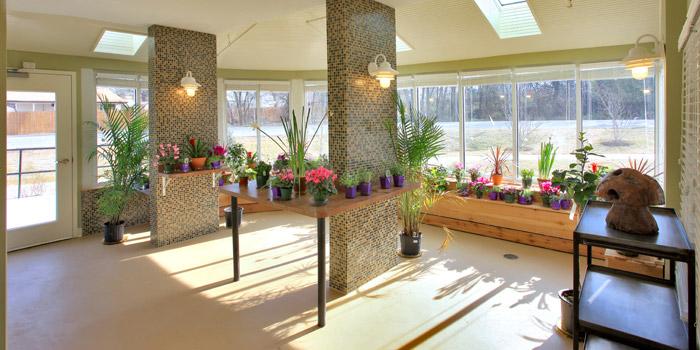 HAMM-greenhouse