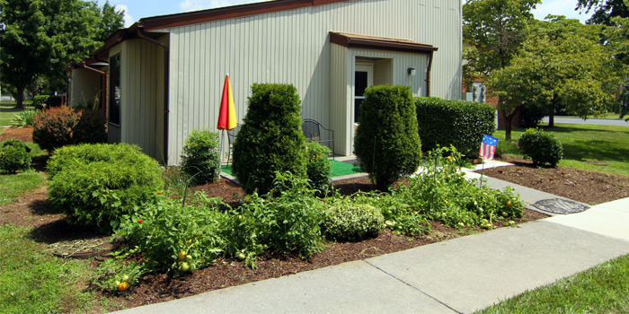 Senior Apartment Community In Winchester Va Shenandoah